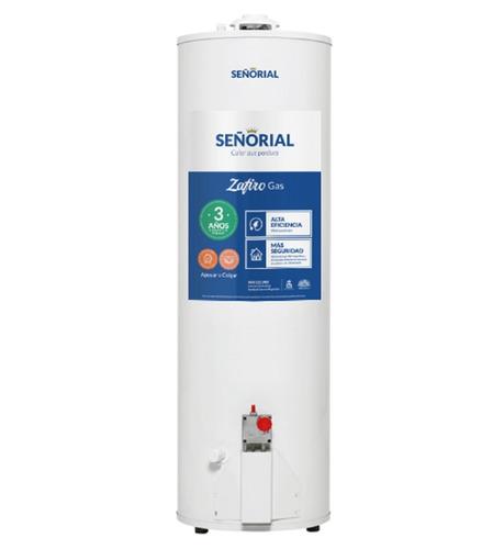 termotanque señorial 160 litros gas natural env. gtia 3 años