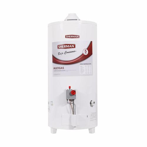 termotanque sherman  80 lts  gas gtia rheem bajo consumo