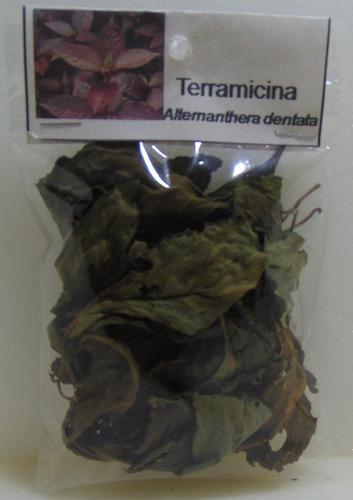 terramicina - 4 unidades