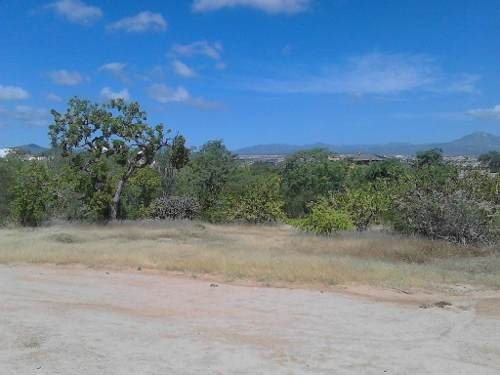 terranova carretera transpeninsular km 6