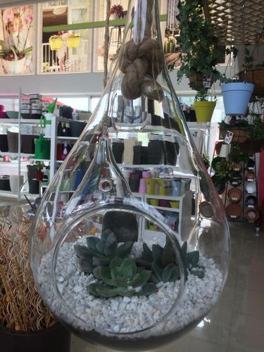 terrario colgante cristal vidrio diseño gota grande