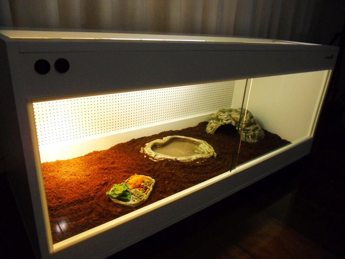 Terr rio para jabuti decorado completo r em for Como criar caracoles de jardin