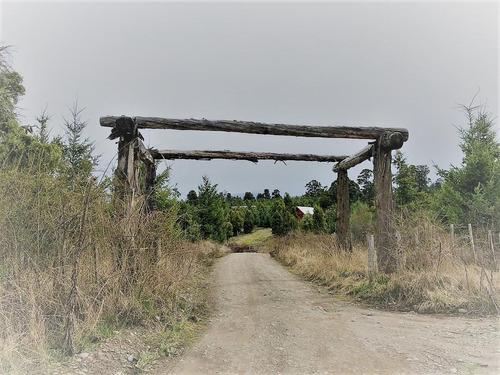 terreno 1 ha callejón wilson - trevelin