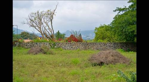 terreno 10,000 m2 huilotepec