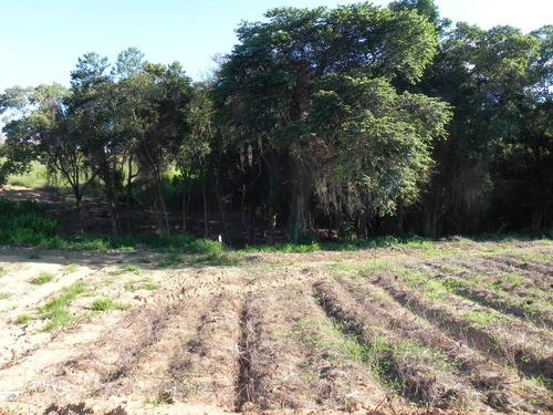 terreno 1000m² ideal p/ veraneio 95%plano pronto p/construir
