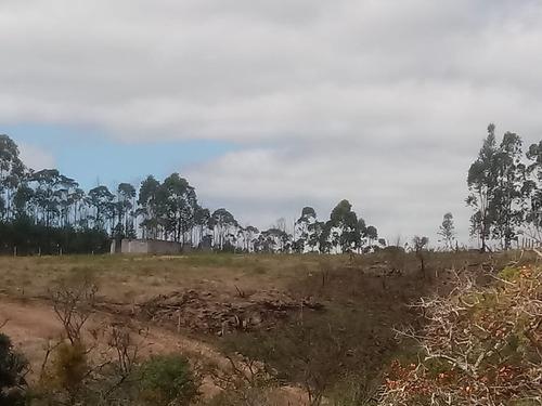terreno 1000m, próximo de sorocaba, apenas 25.000 nt