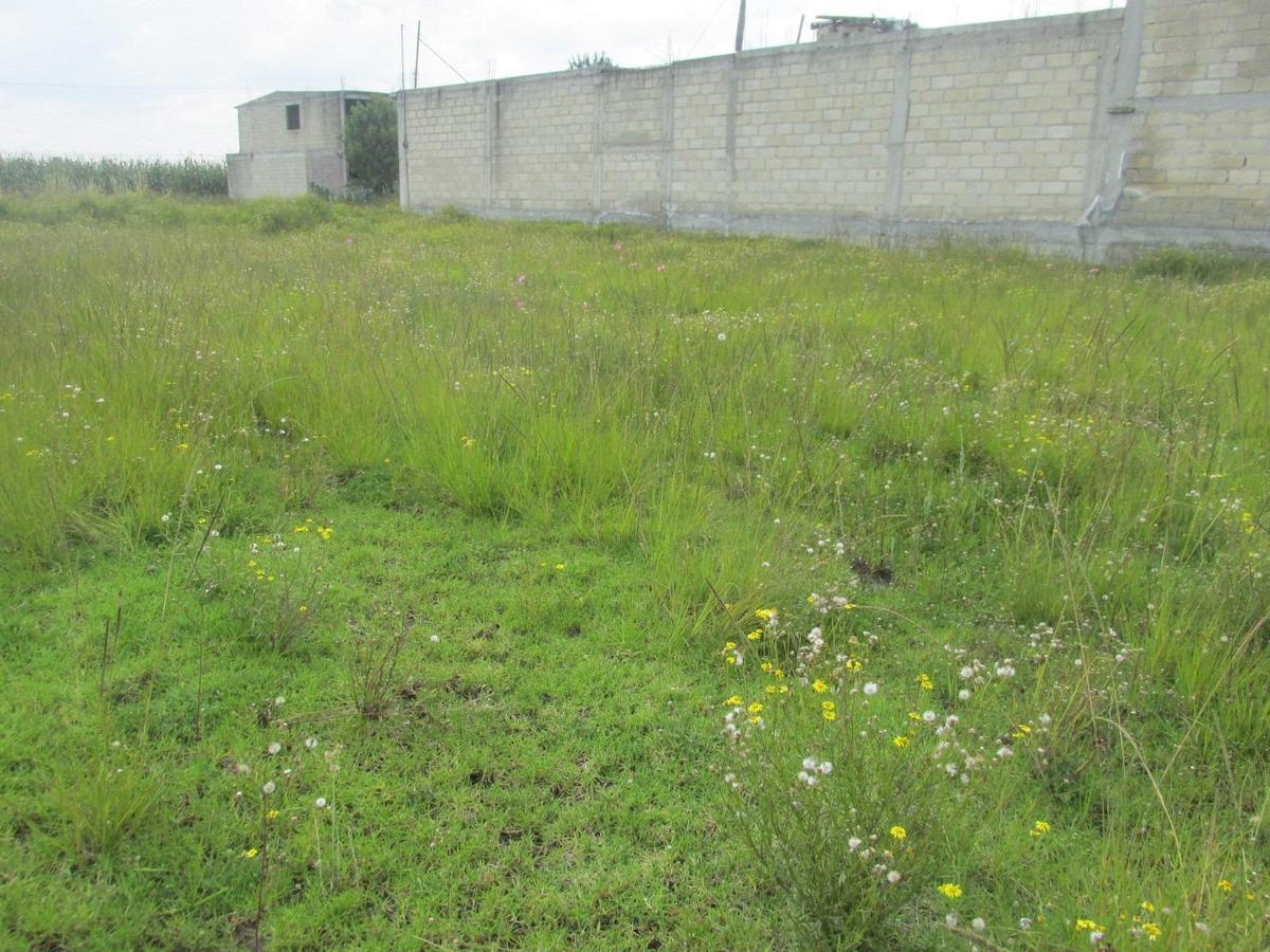 terreno 1500 m2, la constitución totoltepec