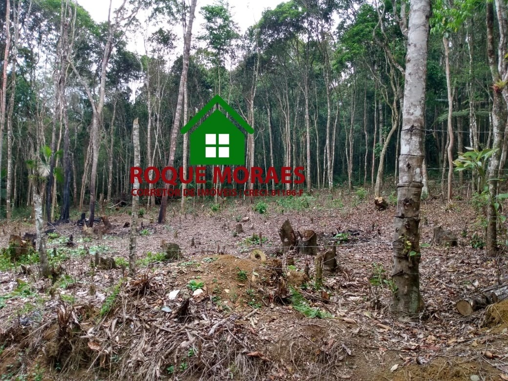 terreno -19,594 m² ref0181