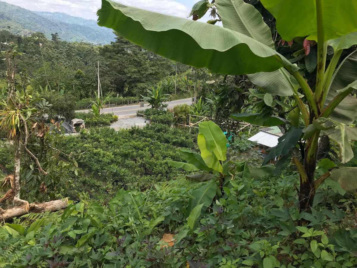terreno 2 hectáreas