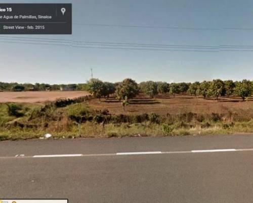 terreno 2 hectareas autopisa tepic mazatlan sinaloa