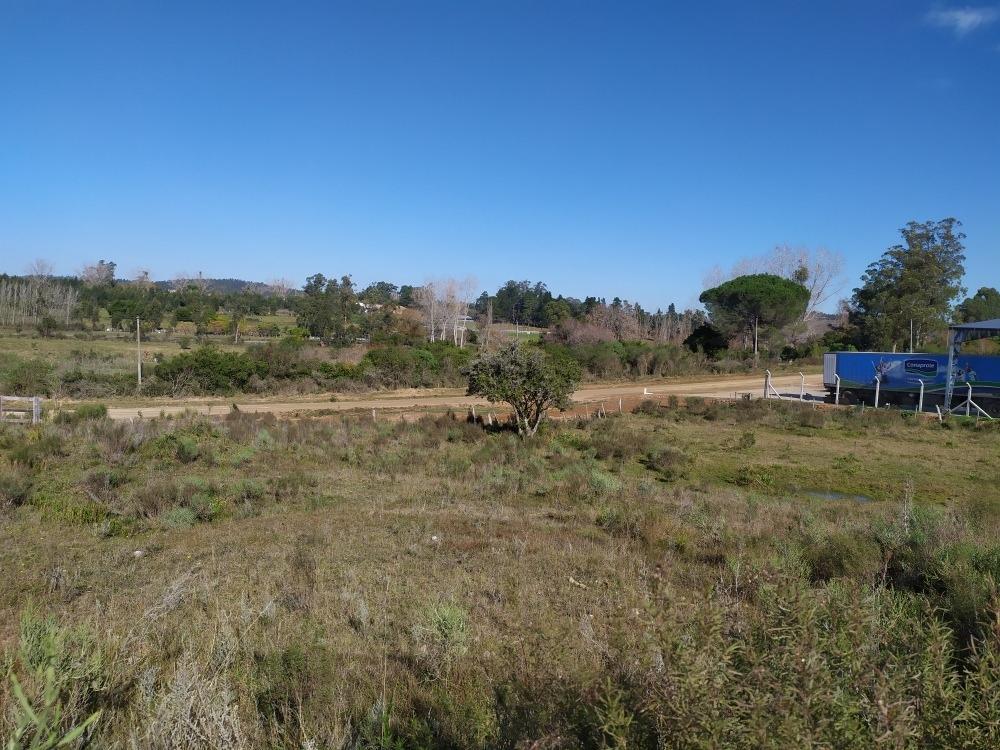 terreno 2 y 1/2 hectáreas a 1 km minas