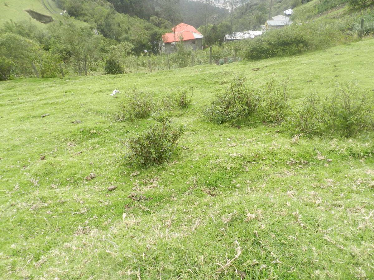 terreno 200m2 sector teleferico negociable