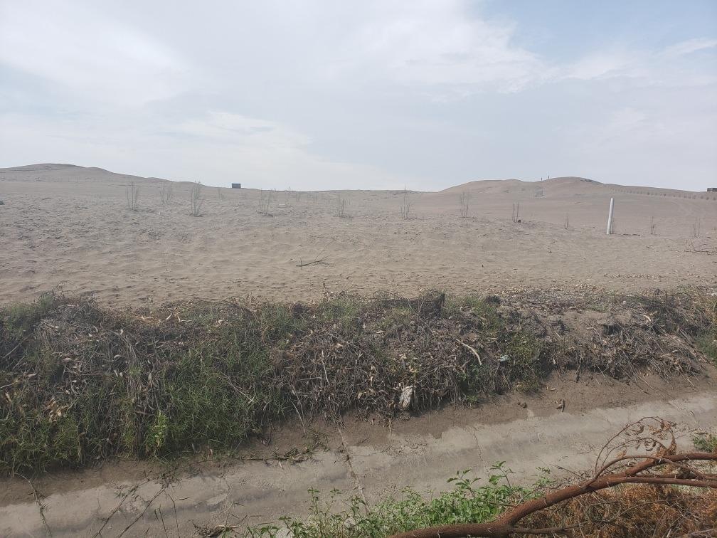 terreno 2.5 hectáreas chacra_eriazo el paraíso huacho
