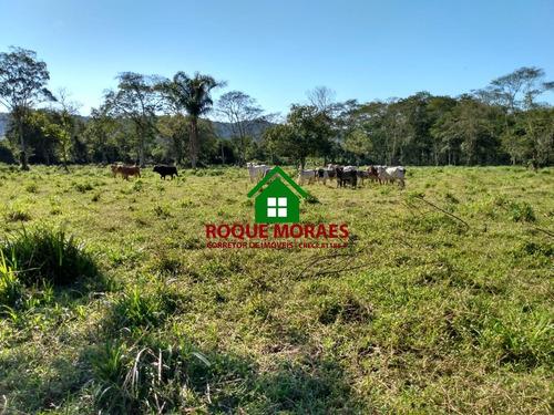 terreno 3 alq paulista bom para criação de gado. ref:0083