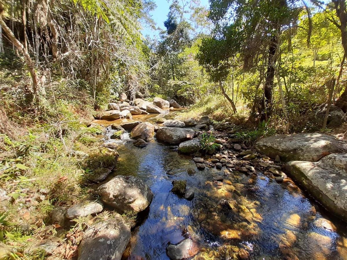 terreno 3 hectares em bom jesus do amparo