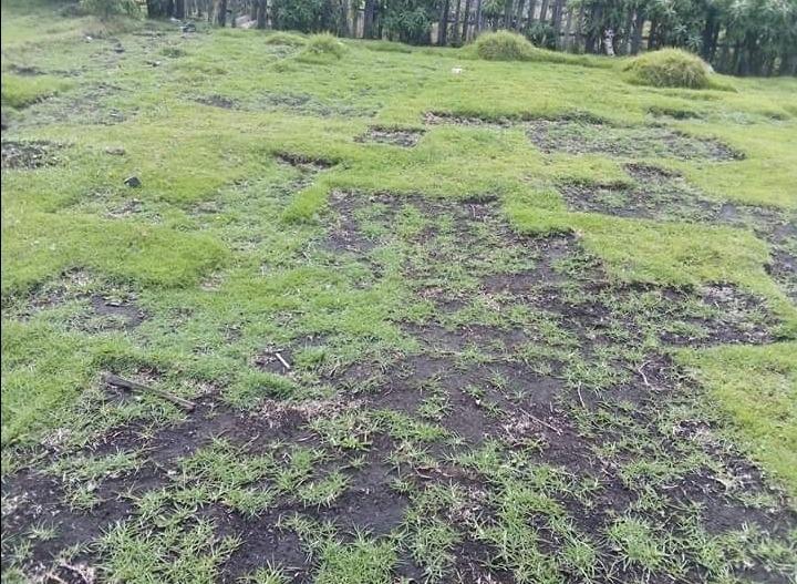 terreno 500 metros en san josé de cutuglagua