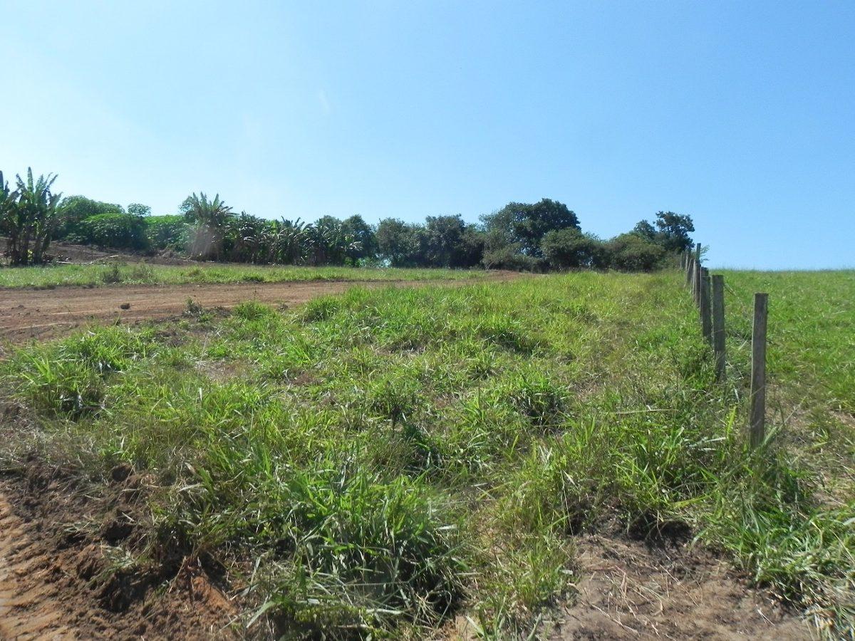 terreno 500m² direto do asfalto no bairro penhinha