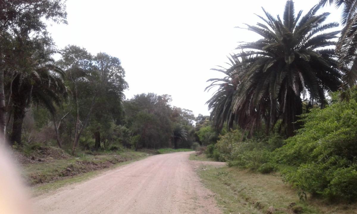 terreno  598 m2 en sauce de portezuelo. maldonado. uruguay.