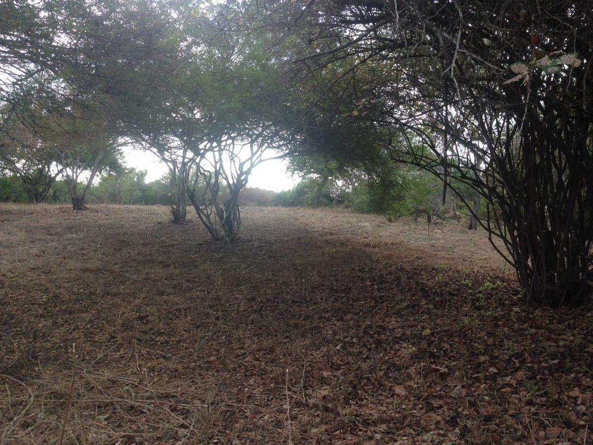 terreno 6.477,00 m2 sector la boca, balneario san jacinto