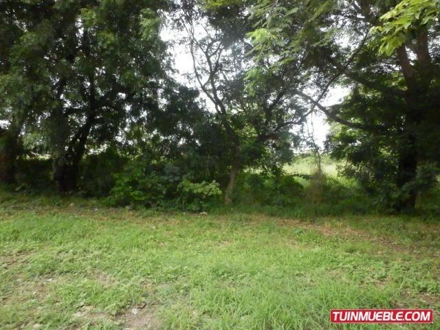 terreno 800mts2uso comercial maracay gbf19-1667