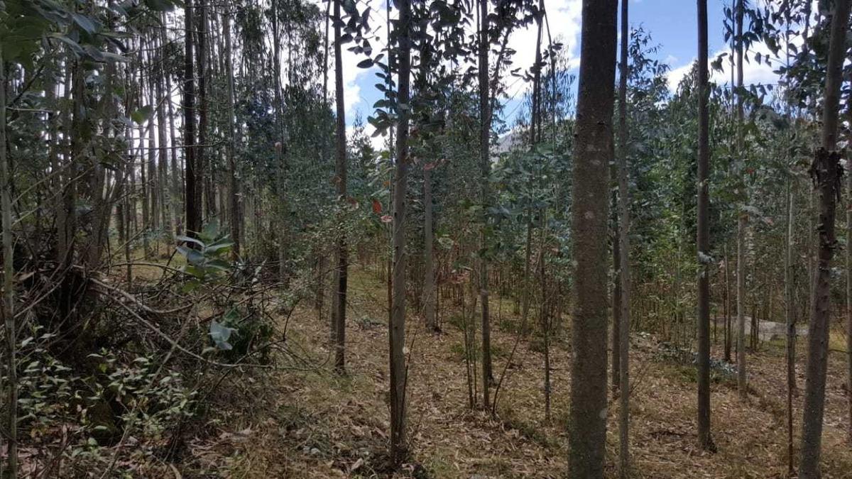 terreno a 2km de san pablo