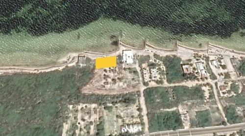 terreno a la orilla del mar en chabihau, yucatán.