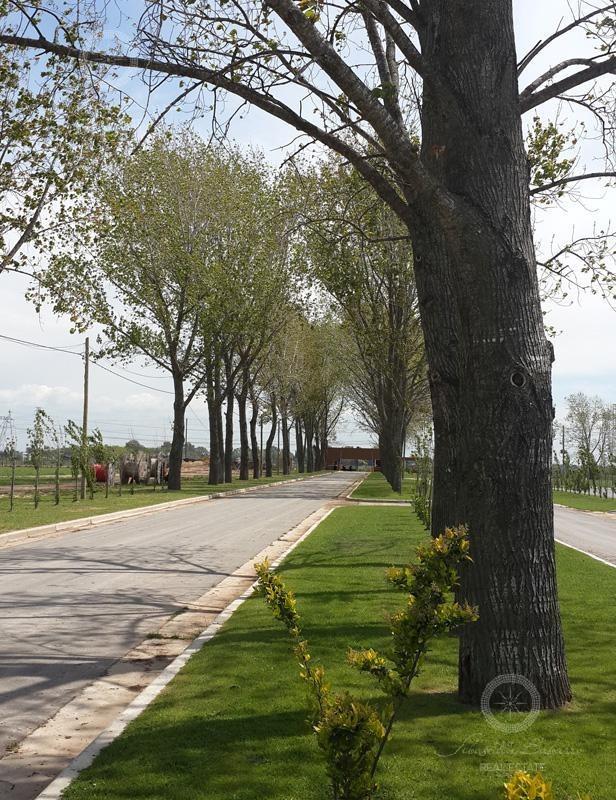 terreno a la venta en barrio privado la alameda canning