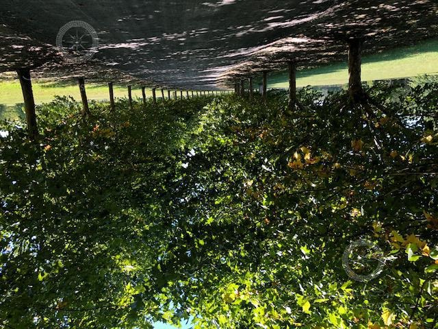 terreno a la venta en estancia villa maria canning