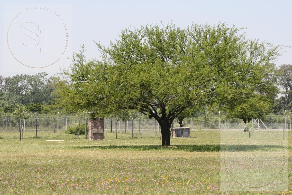 terreno a la venta en pilar del este san ramiro