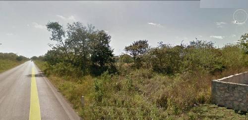 terreno a orilla de carretera a 10 mins de merida. san pedro chimay