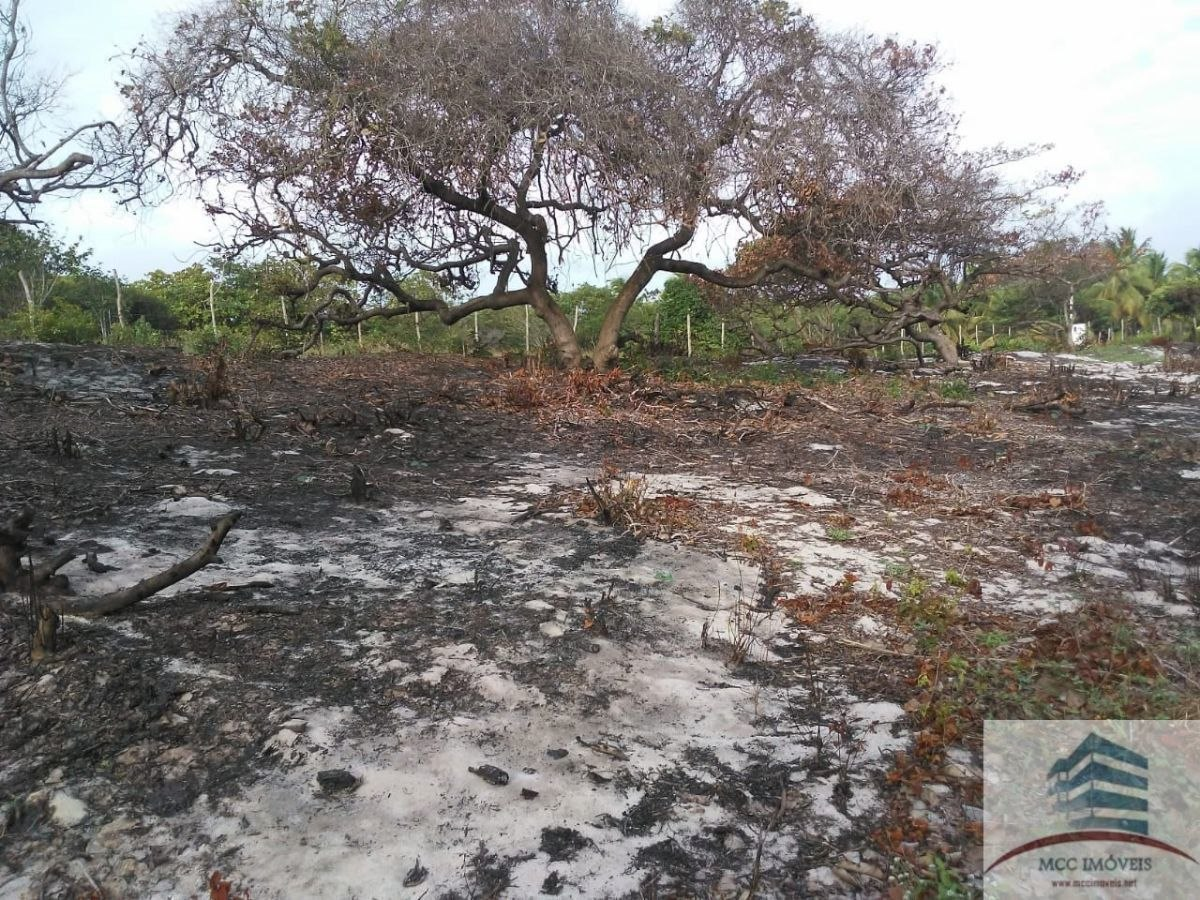 terreno a venda 3000m² em sibaúma.