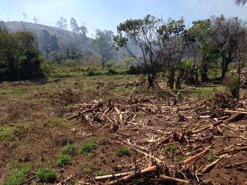 terreno a venda cezar de souza mogi das cruzes - te00163 - 3480632