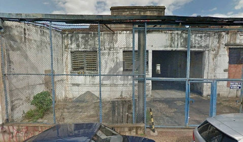 terreno á venda e para aluguel em ponte preta - te193188