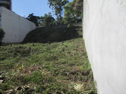 terreno á venda e para aluguel em vila suzana - te197324