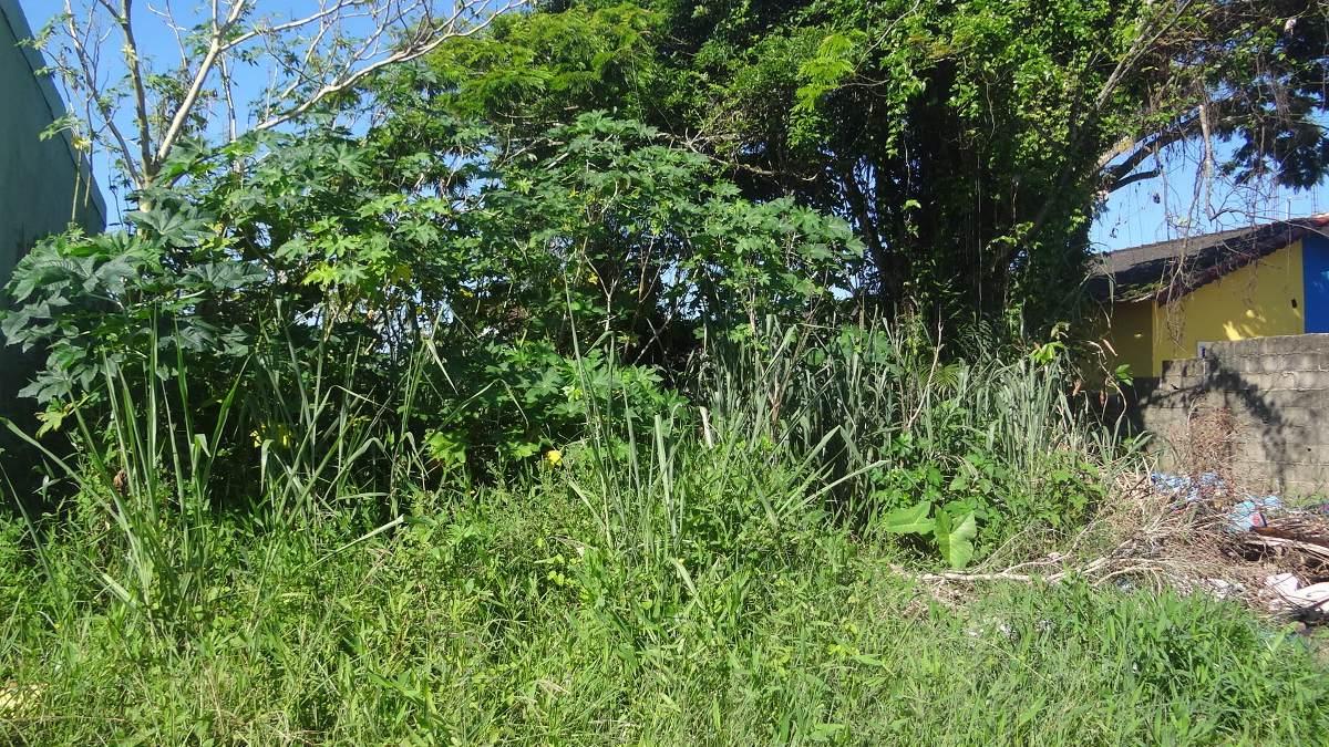 terreno a venda em mongaguá. ref 5951 m