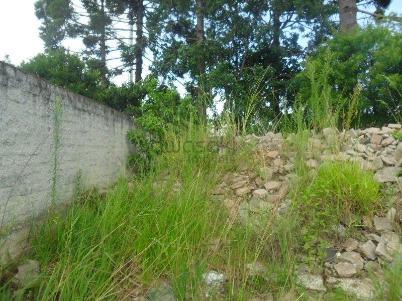 terreno a venda no bairro centro em são josé dos pinhais - - 5487-1