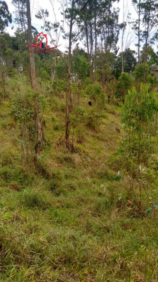 terreno a venda no bairro loteamento cerro azul em campo - 3422-1