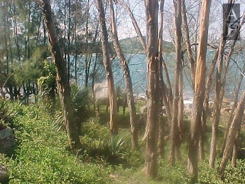 terreno a venda no bairro praia do ouvidor em garopaba - sc. - tv105-1