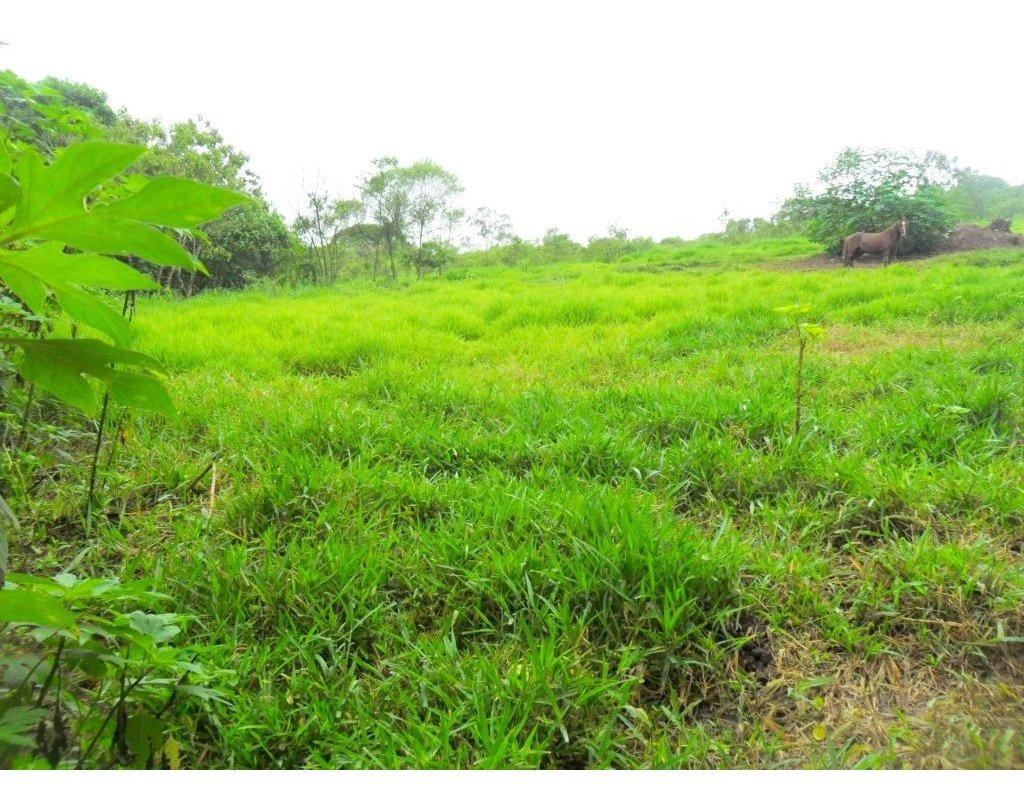terreno a venda no jaceguava  - 12560