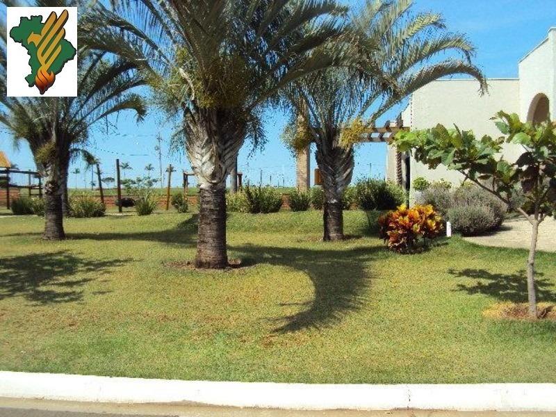 terreno á venda no real park em sumaré - te00005 - 3075684