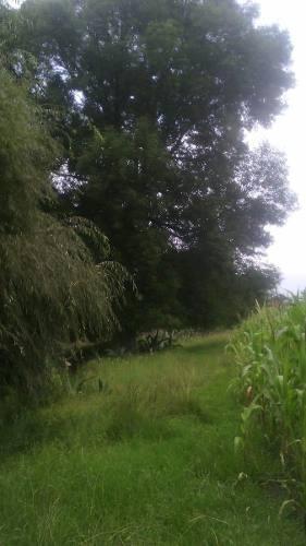 terreno abasolo jilotepec estado de méxico