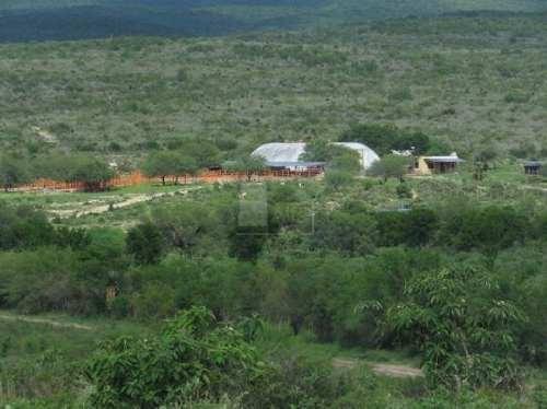 terreno agrãcola en venta en guadalupe, linares, nuevo león