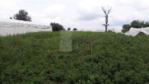 terreno agrãcola en venta en san miguel, villa guerrero, méxico