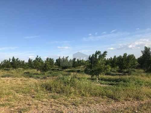 terreno agrãcola en venta en santa elena, camargo, chihuahua