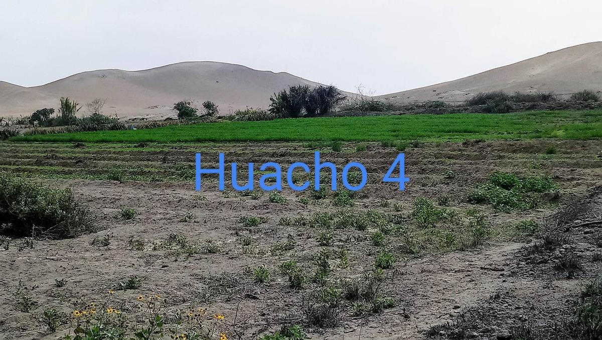 terreno agrícola 25 hectáreas - huacho