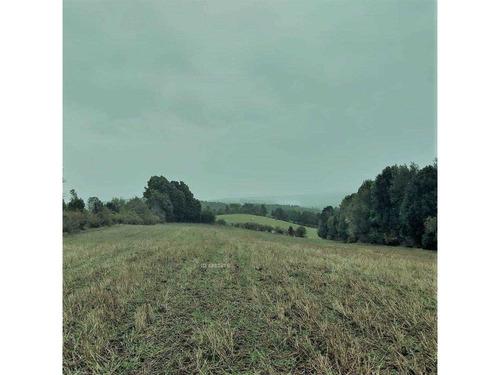 terreno agricola - los muermos .
