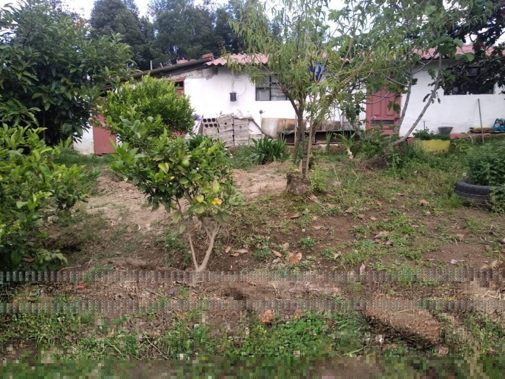 terreno agricola y ganadero