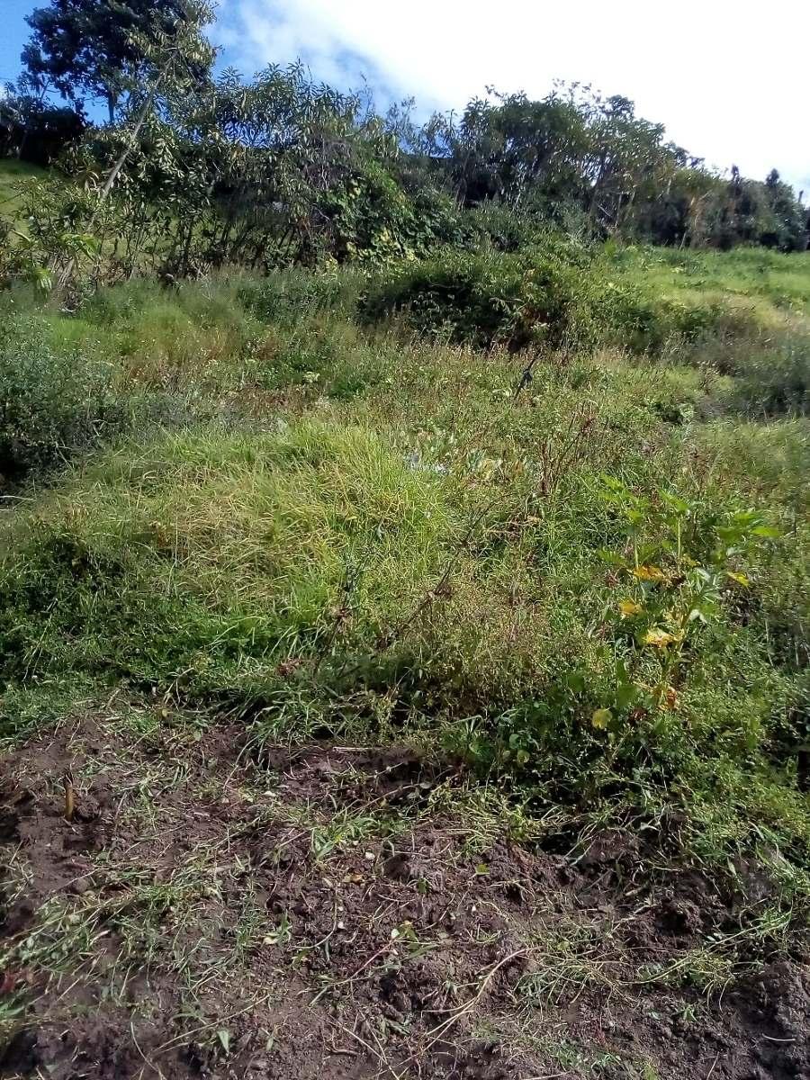 terreno ala via principal en yaruqui san jose precio oferta