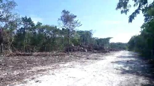 terreno - aldea zama