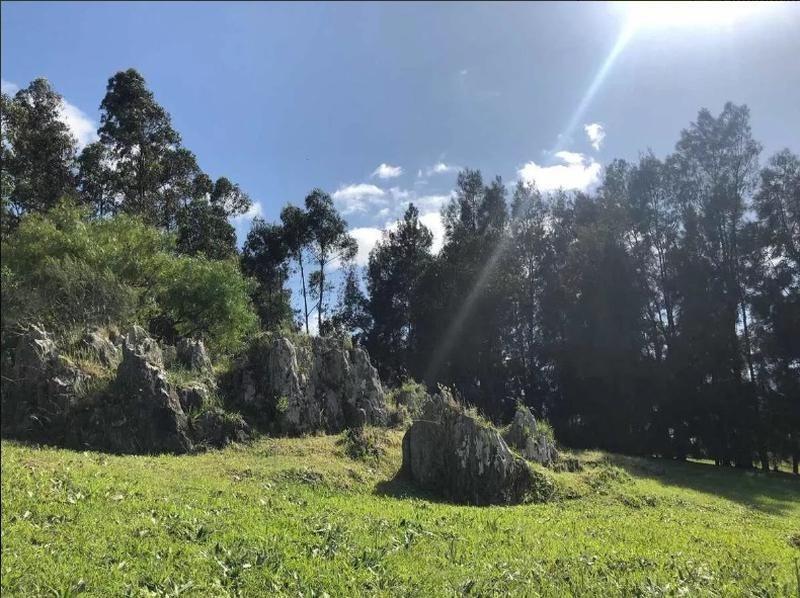 terreno - altos de la tahona